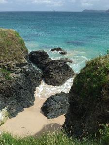 Coastal Cove