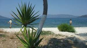 Sami beach life
