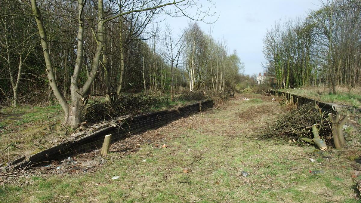 Platform after clearing