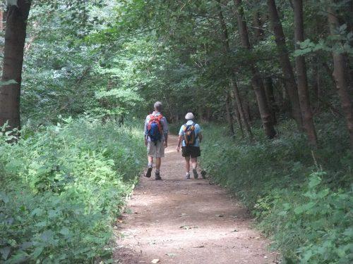 The popular walk to Rievaulx Abbey