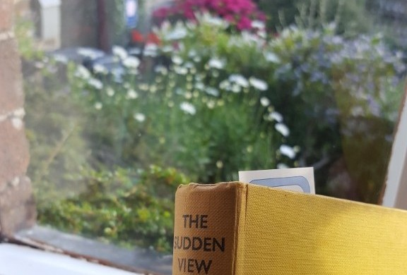 The Sudden View