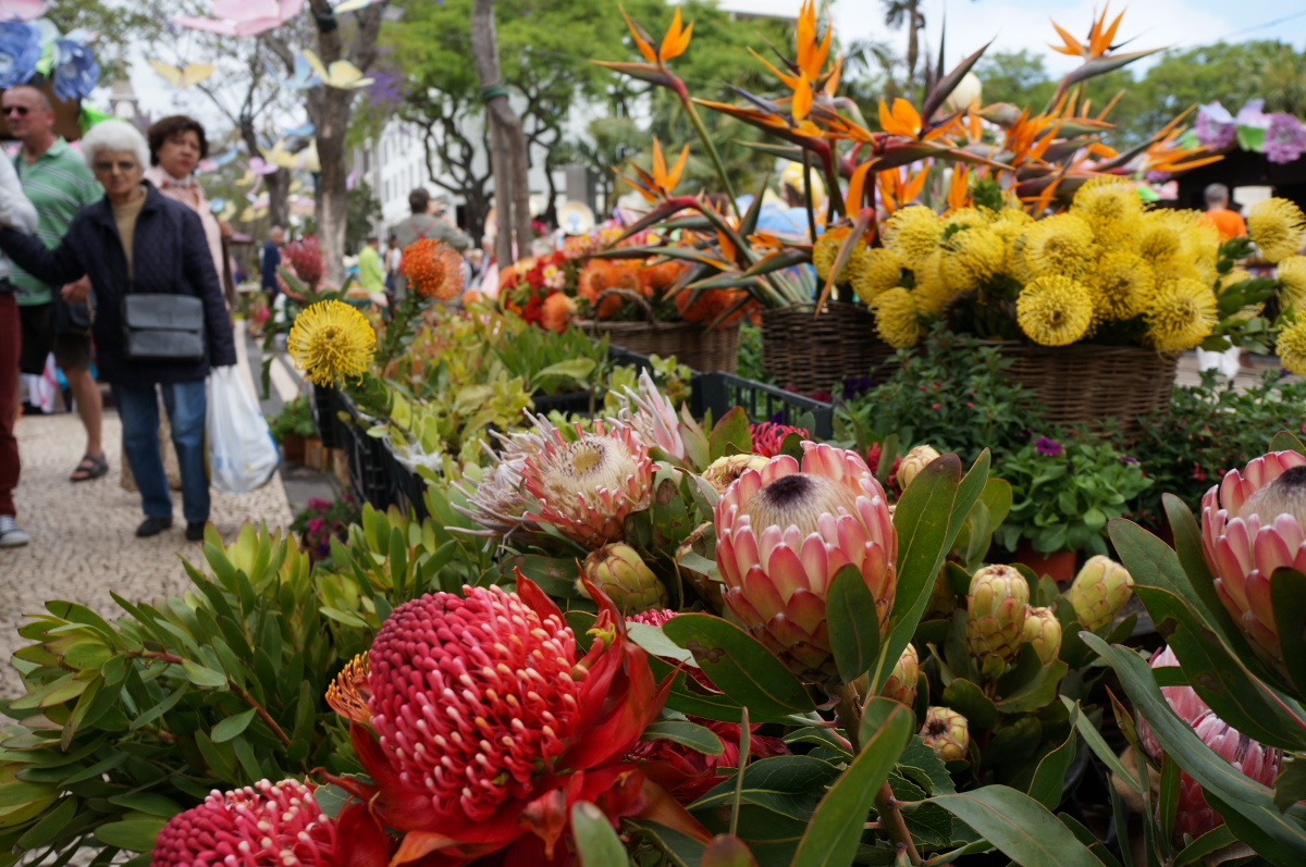 A typical Madeiran flower stall